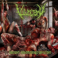 Abusing Dismembered Beauties mp3 Album by Vulvectomy
