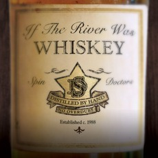 If The River Was Whiskey mp3 Album by Spin Doctors
