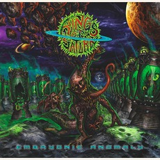 Embryonic Anomaly mp3 Album by Rings Of Saturn
