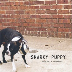 The Only Constant mp3 Album by Snarky Puppy