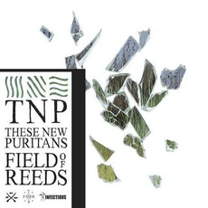 Field Of Reeds mp3 Album by These New Puritans