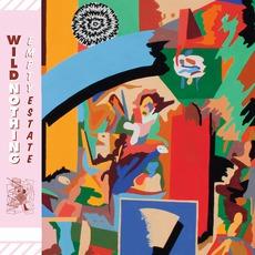 Empty Estate mp3 Album by Wild Nothing