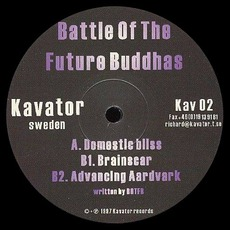 Domestic Bliss / Brainscar by Battle Of The Future Buddhas