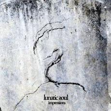 Impressions mp3 Album by Lunatic Soul