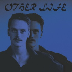 Other Life mp3 Album by Sean Nicholas Savage