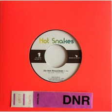 Do Not Resuscitate mp3 Single by Hot Snakes