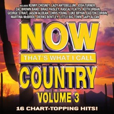 Now That's What I Call Country, Volume 3 by Various Artists