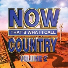 Now That's What I Call Country, Volume 2 by Various Artists