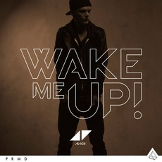 Wake Me Up mp3 Single by Avicii