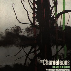 Dreams In Celluloid (Remastered) mp3 Album by The Chameleons