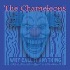 Why Call It Anything? (Remastered) mp3 Album by The Chameleons