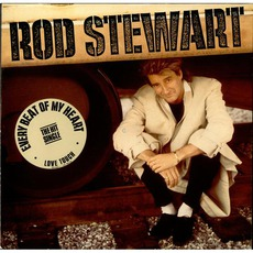 Every Beat Of My Heart mp3 Album by Rod Stewart