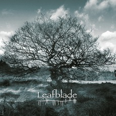 Beyond, Beyond mp3 Album by Leafblade