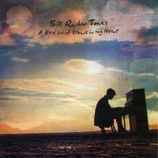 A Bad Wind Blows In My Heart by Bill Ryder-Jones