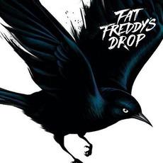 Blackbird mp3 Album by Fat Freddy's Drop
