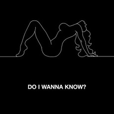 Do I Wanna Know? mp3 Single by Arctic Monkeys