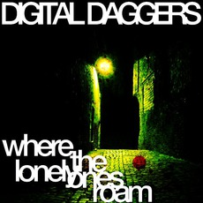 Where The Lonely Ones Roam mp3 Single by Digital Daggers