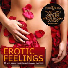 Erotic Feelings: 30 Sexy Lounge Tracks For Passionated Moments