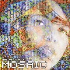 The Mosaic Project mp3 Album by Terri Lyne Carrington
