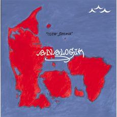 New Seeland mp3 Album by Analogik