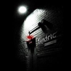 37 Channels mp3 Album by Tantric