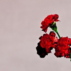Love In The Future (Deluxe Edition) mp3 Album by John Legend