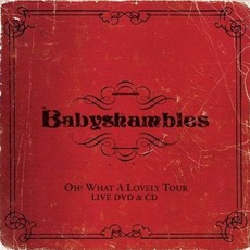 Oh! What A Lovely Tour by Babyshambles