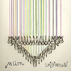 Smilewound mp3 Album by múm