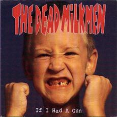 If I Had A Gun