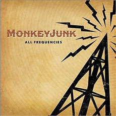 All Frequencies mp3 Album by MonkeyJunk
