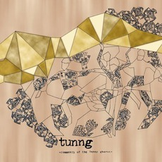 Comments Of The Inner Chorus (Special Edition) mp3 Album by Tunng