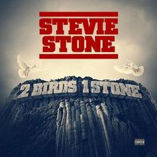 2 Birds 1 Stone mp3 Album by Stevie Stone