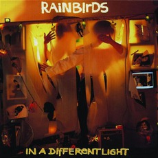 In A Different Light by Rainbirds
