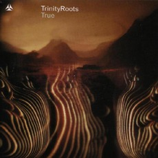 True mp3 Album by Trinity Roots