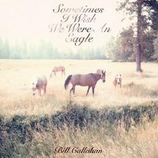 Sometimes I Wish We Were An Eagle mp3 Album by Bill Callahan