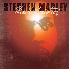 Mind Control mp3 Album by Stephen Marley