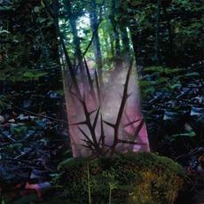 Stealth Of Days mp3 Album by Jensen Sportag