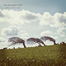 What We Have Sown (Re-Issue) mp3 Album by The Pineapple Thief