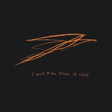 I Want To See Pulaski At Night mp3 Album by Andrew Bird