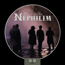 5 Album Box Set mp3 Artist Compilation by Fields Of The Nephilim