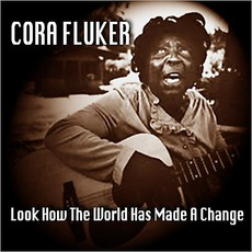 Look How The World Has Made A Change mp3 Album by Cora Fluker