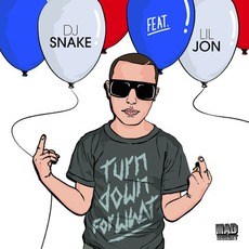 Turn Down For What mp3 Single by DJ Snake