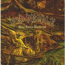 Mons Animae Mortuorum
