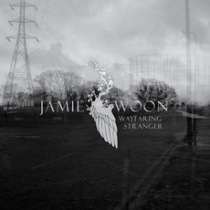 Wayfaring Stranger mp3 Single by Jamie Woon