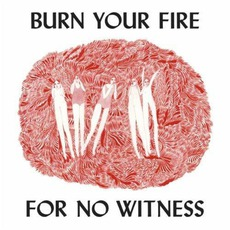 Burn Your Fire For No Witness mp3 Album by Angel Olsen