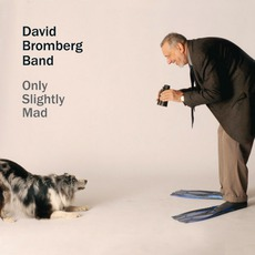 Only Slightly Mad mp3 Album by David Bromberg Band