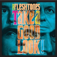 Take A Good Look! by The Fleshtones