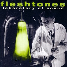 Laboratory Of Sound by The Fleshtones