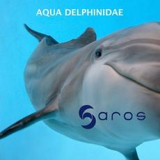 Aqua Delphinidae