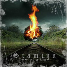 Two Of A Kind by Stamina